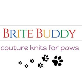 lvjordan-brite-buddy-rectangle-product-size